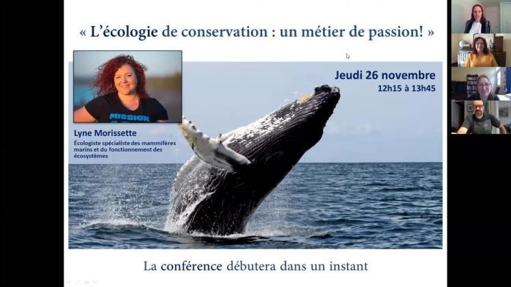 Vidéo : L'écologie de la conservation : un métier de passion!